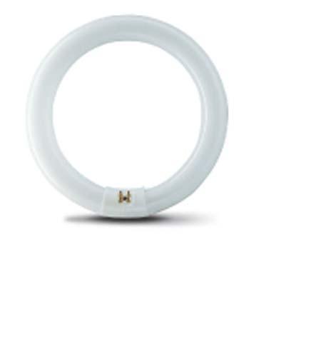 22w Circline Fluorescent Lamp Philips Fluorescent